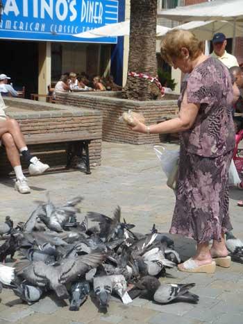 alimentando-palomas.jpg