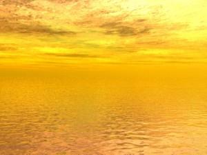 amarillo-300x225.jpg