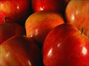 apples-300x223.jpg