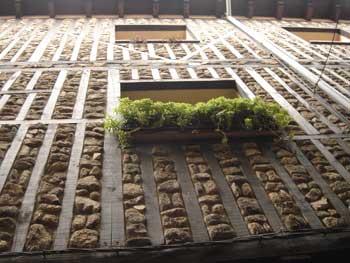 asomate-a-la-ventana.jpg