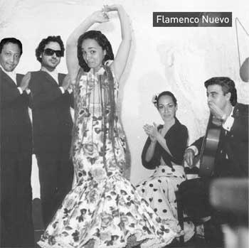 flamenco-nuevo.jpg