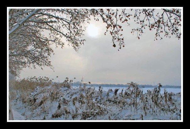 jardin-de-invierno.jpg