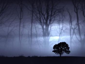 la-noche-de-los-lobos.jpg