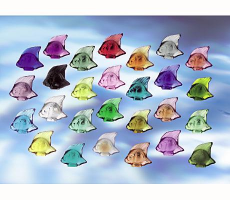 pececillos-de-colores.jpg