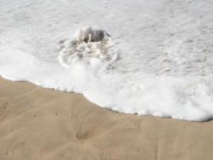 sobre-el-agua-300x225.jpg